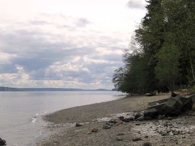 Puget Sound near Tacoma Narrows Bridge (2006)