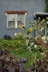 Garden in front yard of side house on Albemarle Road