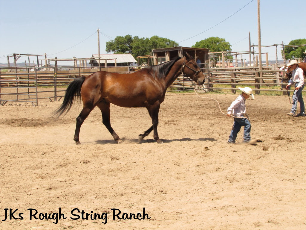 If You Want to Sell a Horse~Get a Cute Cowboy