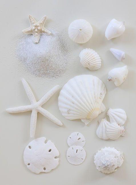 ❖~.~ Cream, White, Ivory ~.~❖