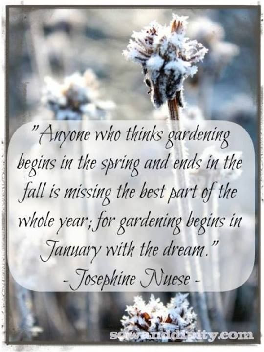 """Anyone who thinks gardening begins in the spring and ends in the fall is missing the best part of the whole year; for gardening begins in January with the dream.""  Josephine Nuese"