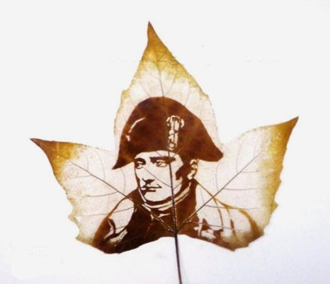 Napoleon pictured on a leaf