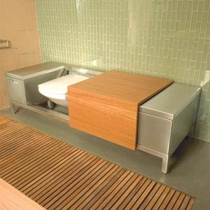 This and That and More of the Same: DISAPPEARING ACT: The Bench Toilet
