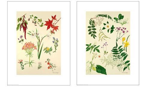 Dormitorio muebles modernos cuadros y laminas ikea for Laminas para cuadros para imprimir
