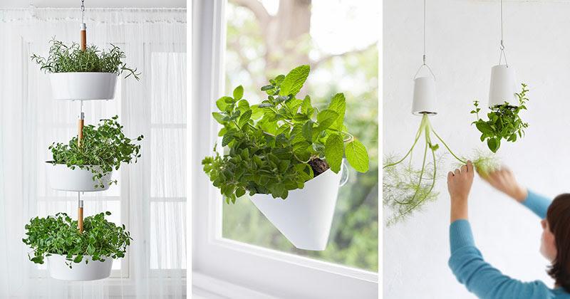 Indoor Garden Idea - Hang Your Plants From The Ceiling & Walls