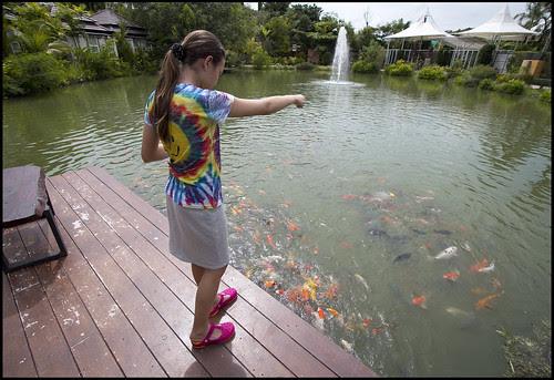 Feeding the Fish at Phuket Botanic Garden