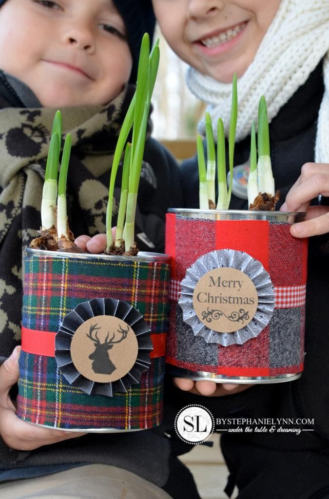 Great gift idea...paperwhites in a beautifully wrapped cans | Friday Christmas Favorites at www.andersonandgrant.com
