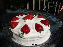 French Strawberry Cake by Teckelcar