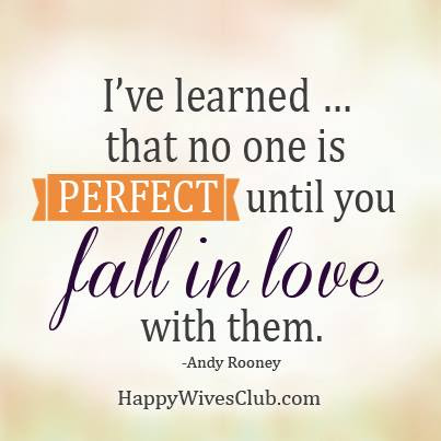 No One Is Perfect Until Happy Wives Club