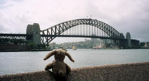 Buttons and Sydney Harbour Bridge