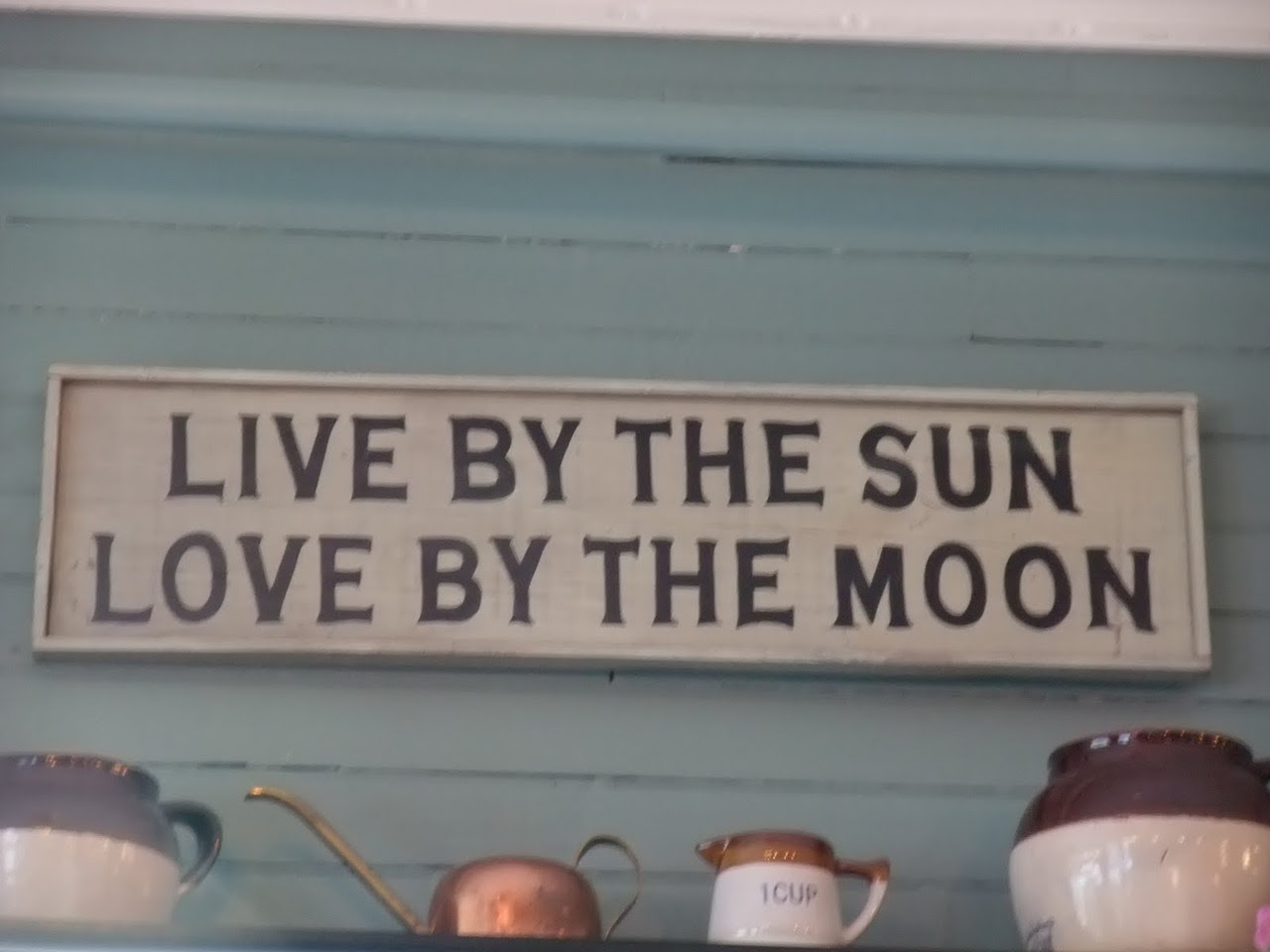 Live By The Sun Love By The Moon Summer Quote Quotespicturescom