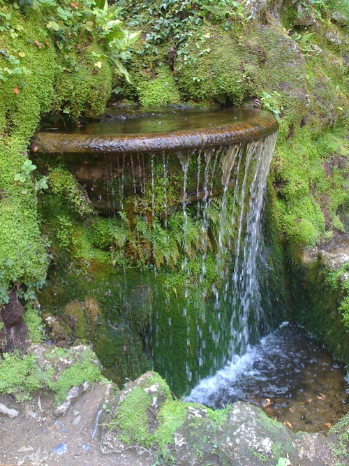 bluepueblo:  Garden Waterfall, Ireland photo via beldam