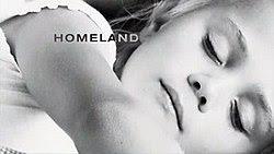 HomelandTVSeries.jpg