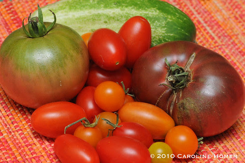 Home grown tomatoes and cucumber