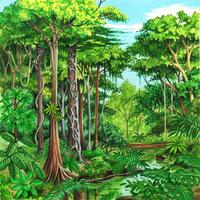 Desenho De Uma Floresta Mmod