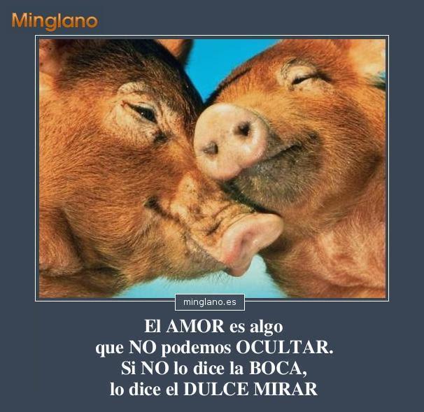 Frases De Amor Imposible Y De Amor No Correspondido