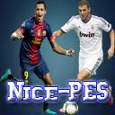 .: Nice PES :.