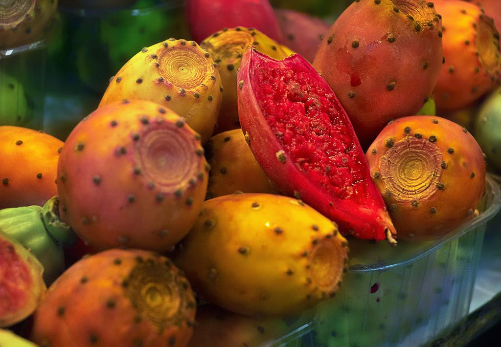 Opuntia ficus indica: Cactus Figs - Higos Chumbos [enlarge]