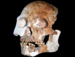 china-human-fossils.jpg
