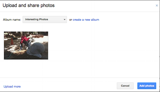 picasa google photos upload embed 3
