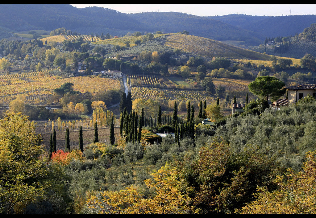 San Gimignano - I
