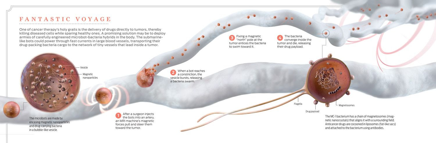 photo-illustration of direct delivery of drugs to tumors
