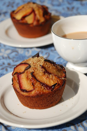Yogurt Plum Muffins
