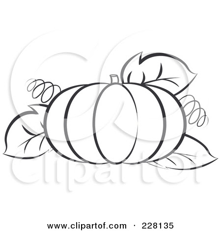 Pumpkin Outline Drawing At Getdrawingscom Free For Personal Use