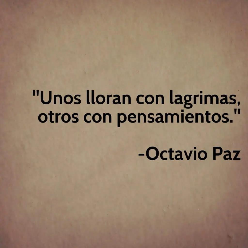 Frases De Amor Octavio Paz Kerja Kost