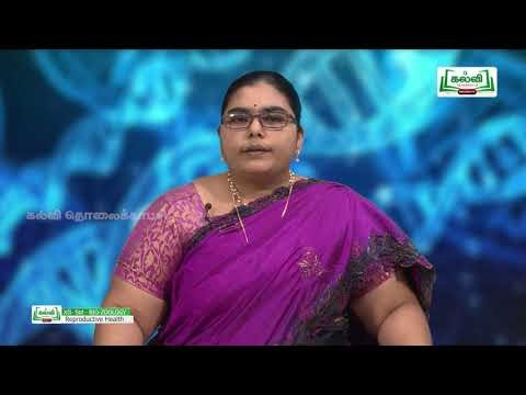 12th Bio Zoology Unit 1 Human Reproductive Health Lesson 2 Kalvi TV