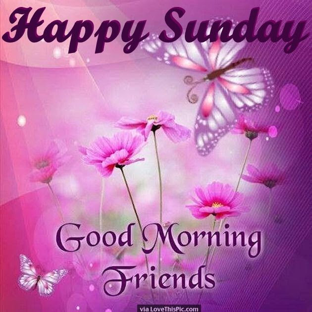 Happy Sunday Good Morning Friends Pictures Photos And Images For