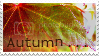 photo __autumn_________stamp__by_ecc500-d49v4tq_zpsvvadiduu.png