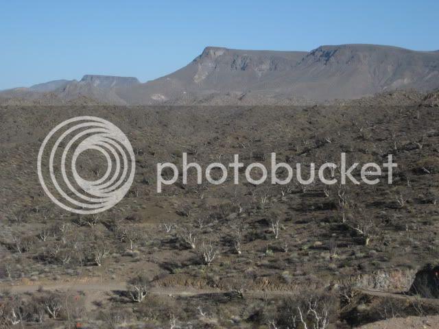 http://i213.photobucket.com/albums/cc212/DavidKier/EL%20VOLCAN%202011/Volcan2011027.jpg