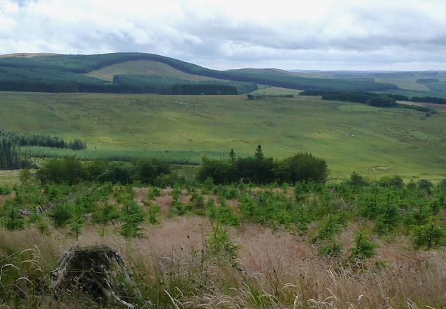 File:Elenydd landscape south of Llanddewi-Brefi, Ceredigion - geograph.org.uk - 1413892.jpg