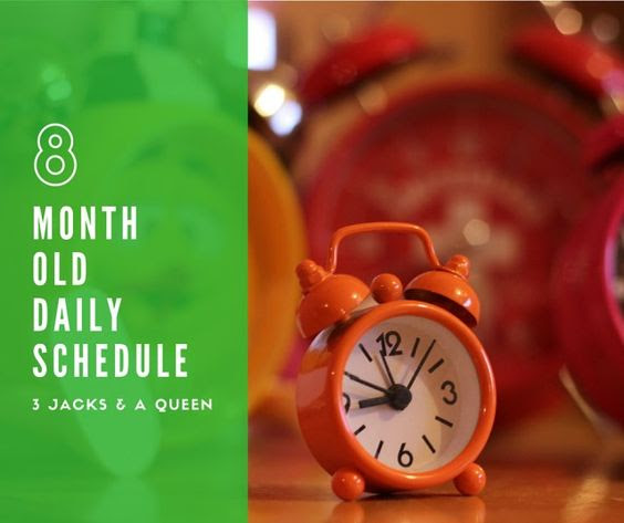 Daily schedules, 8 month olds and Jack o