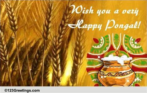 Warm Wishes On Pongal. Free Pongal eCards, Greeting Cards