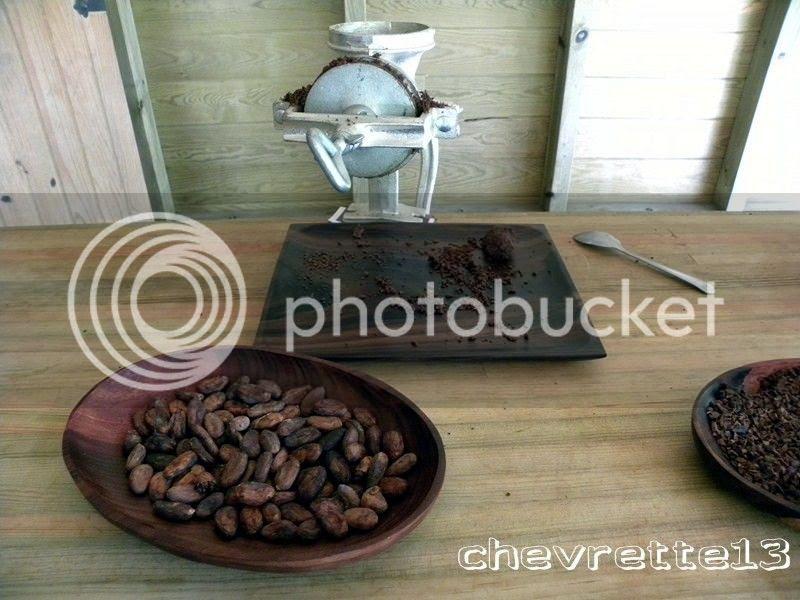 http://i1252.photobucket.com/albums/hh578/chevrette13/Guadeloupe/DSCN6968Copier_zps6c0c504d.jpg