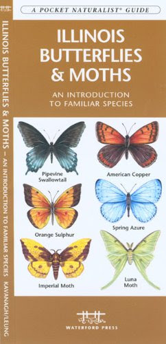 Illinois Butterflies Moths A Folding Pocket Guide To Familiar Species Pocket Naturalist Guide Series