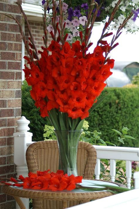 17 Best ideas about Gladiolus Centerpiece on Pinterest