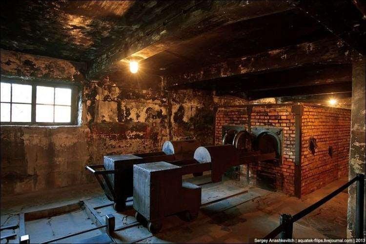 Холокост – это колоссальный обман Человечества паразитической Системой