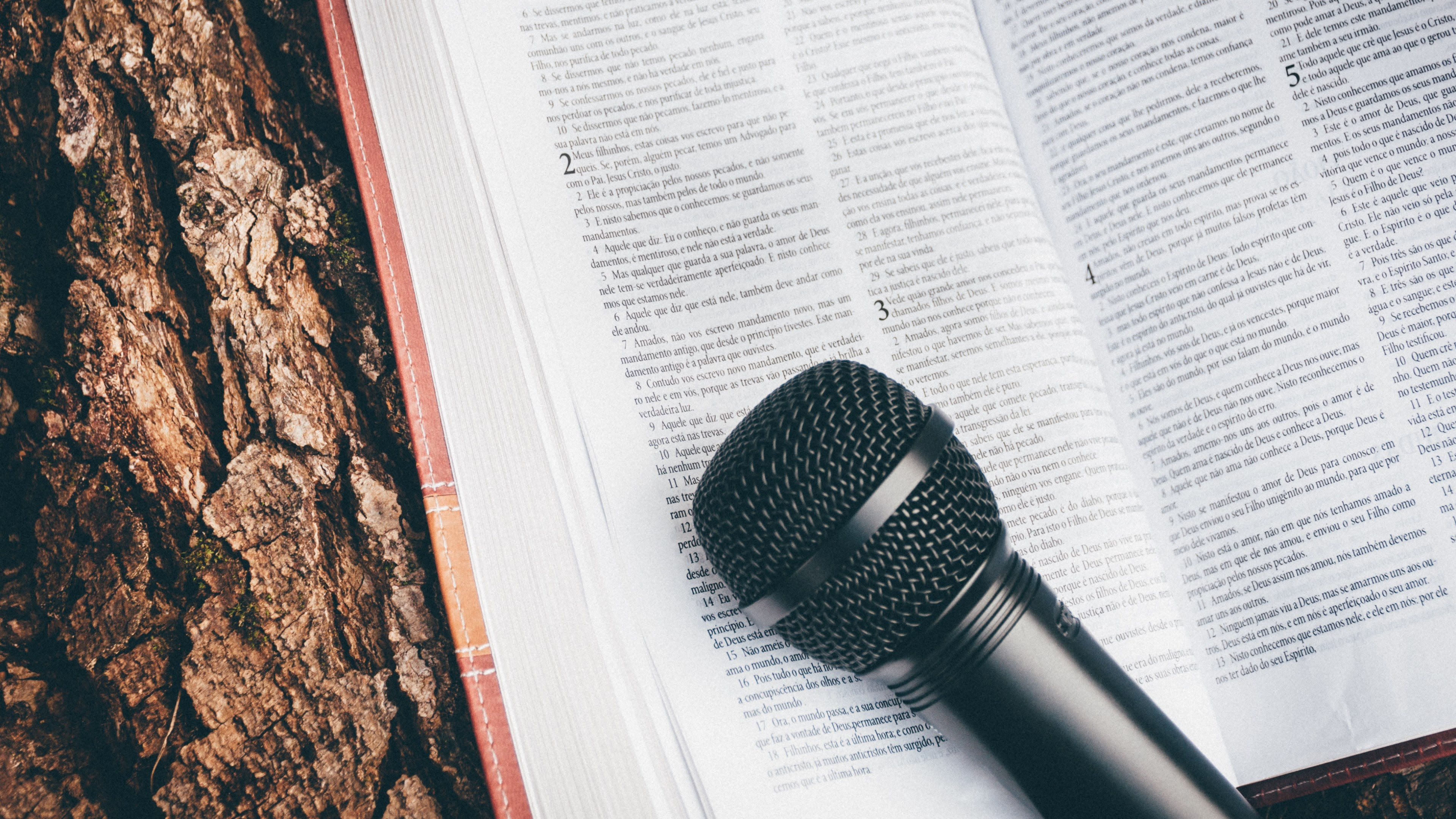 A Microphone And Bible Resting On A Tree Stumppraise And Worship