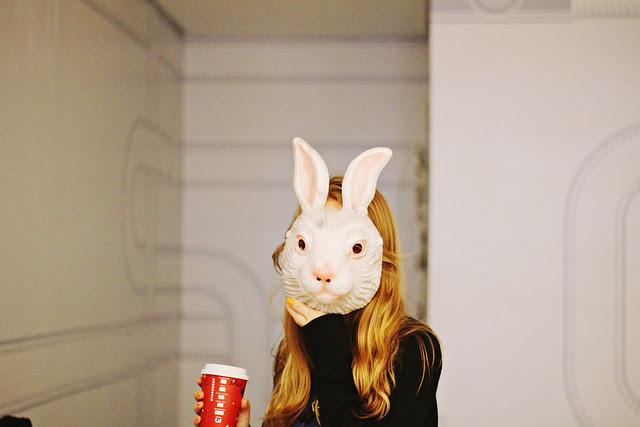 bunny pal