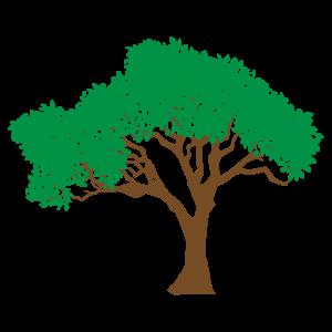 リアルな木 花植物イラスト Flode Illustration フロデイラスト