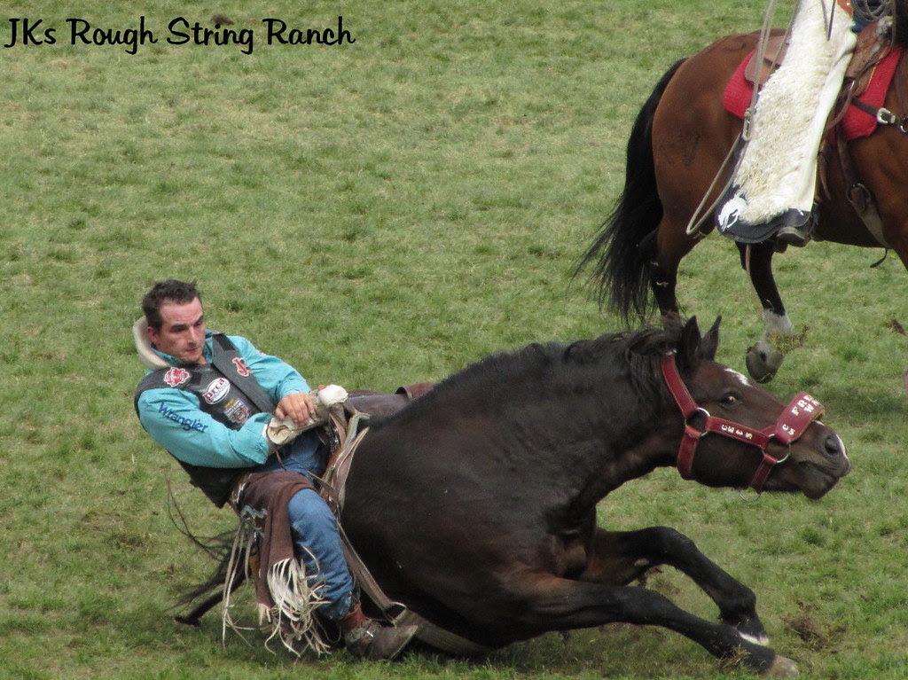 Horse & Rider~Similar Expressions?