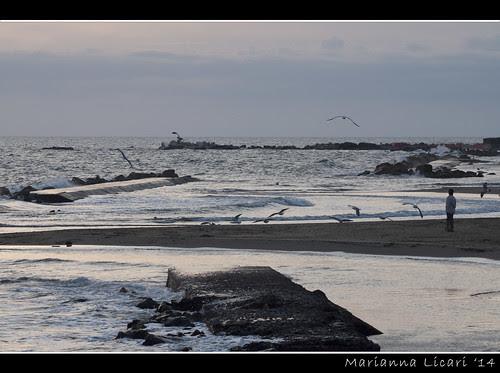Il mare d'inverno/The winter sea by via_parata