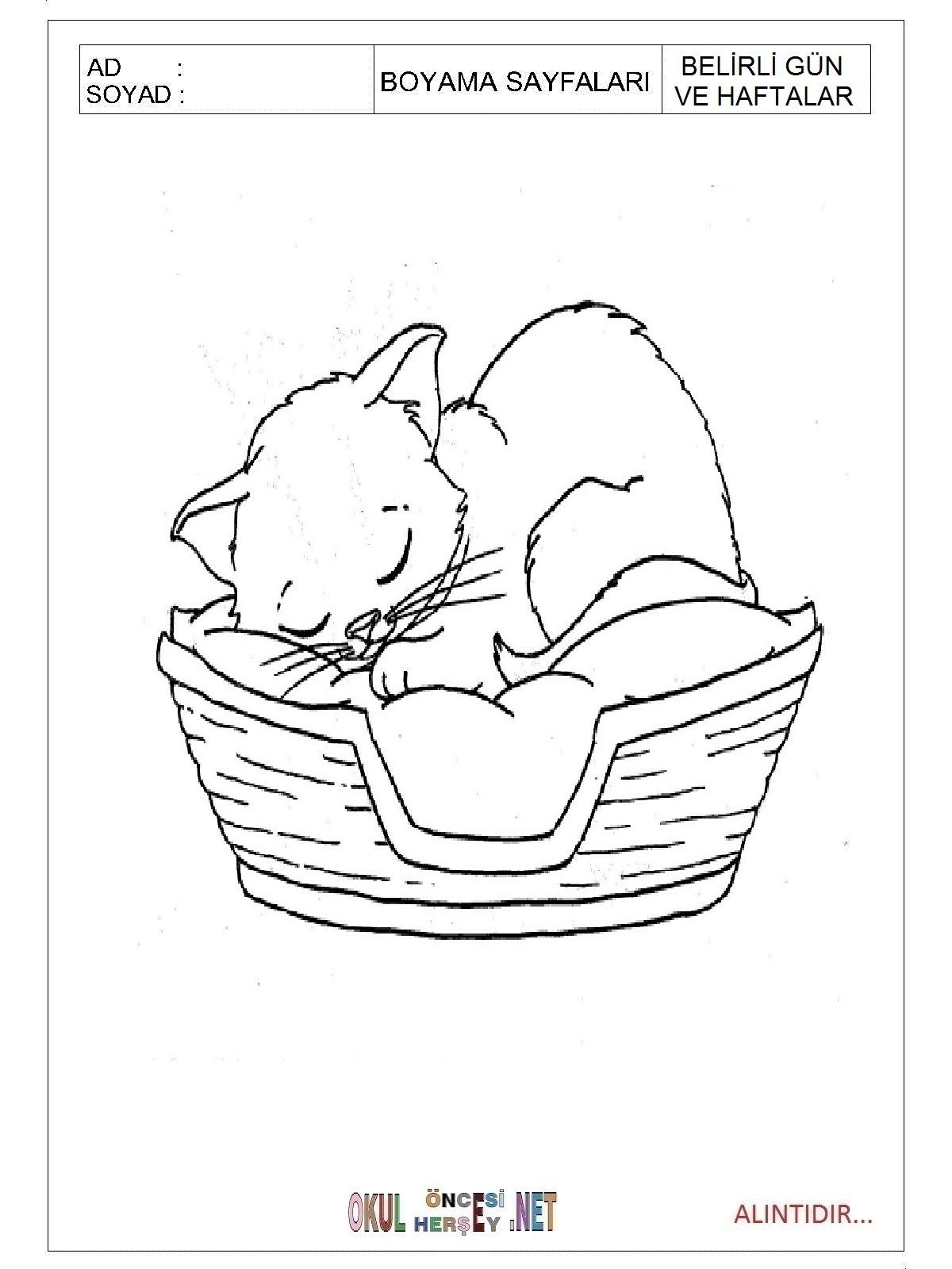 Hayvanları Koruma Günü Boyama Sayfaları