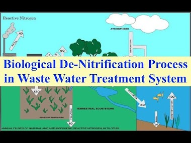 Biological De Nitrification Process in Waste Water Treatment System