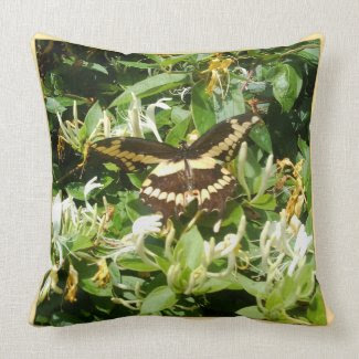 Black Swallowtail on Honeysuckle Throw Pillows