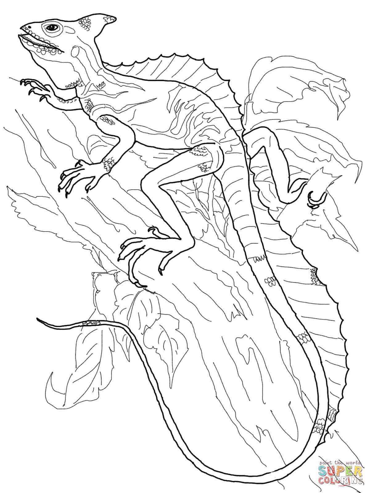 Skink - Free Coloring Pages