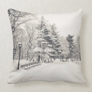 Central Park Winter Path - New York City Pillows